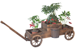 antique wooden wagon planter